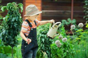 Gärtnern für Familien