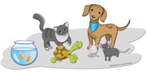 Hund, Katze, Ratte – Welches Haustier passt zuuns?